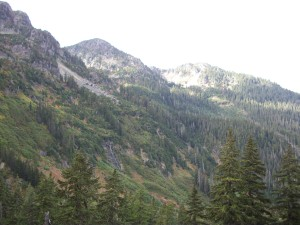 Foothills of Mount Baker